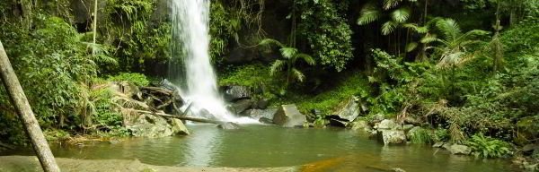 Mt Tamborine Queensland Australia